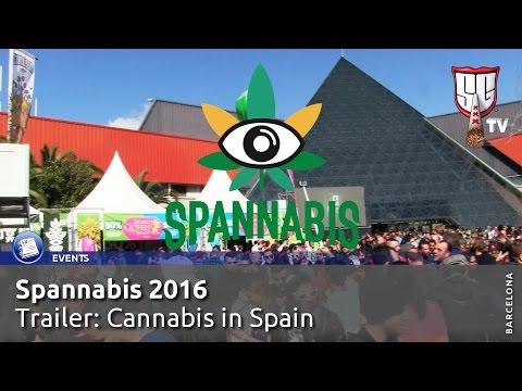 Spannabis Barcelona 2016 TRAILER Cannabis in Spain - Smokers Guide TV Spain