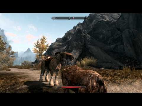 Ordinary Day In Skyrim