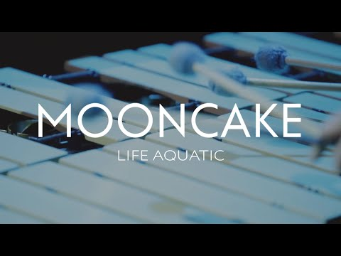Mooncake - Life Aquatic (live at CHA, Moscow, 27.03.2014) (видео)