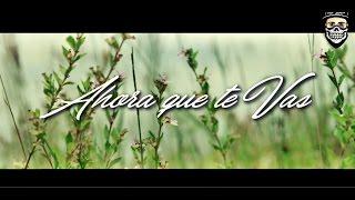 Ahora Que Te Vas Cosculluela Ft Christian Daniel Video Official