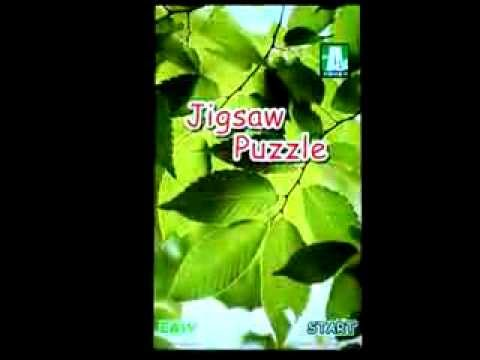 Video of Jigsaw Puzzle
