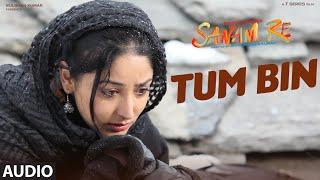 TUM BIN Full Song (AUDIO) | SANAM RE | Pulkit Samrat, Yami Gautam, Divya Khosla Kumar full download video download mp3 download music download