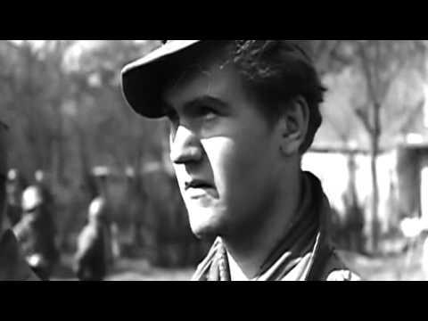 Als der Krieg nach Deutschland kam   Teil 2 Über den Rhein
