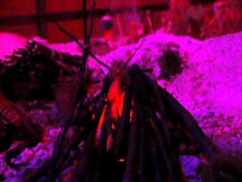 Preview video Il Presepe pi� bello di tutta la Toscana