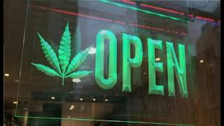 From Under The Influence with Marijuana Man: A Funny Thing Happened On The Way To My Rights!!! by Pot TV