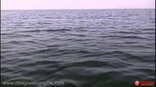 Nal Sarovar Bird Sanctuary Sanand Gujarat | Boat Ride at Nalsarovar | Nalsarovar Lake full download video download mp3 download music download