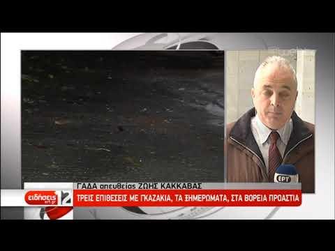 Video - ΝΔ για την επίθεση σε επιχείρηση του Ρωμανού: Κανείς μας δεν εκφοβίζεται