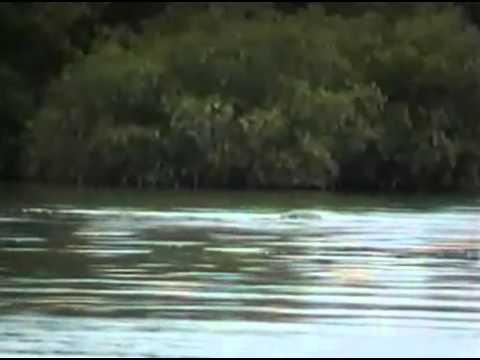 พยานาค แม่น้ำโขง -