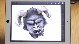Procreate – video review