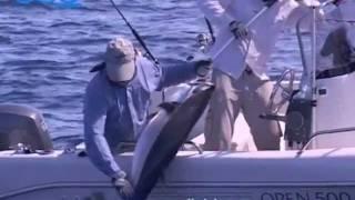 Морская рыбалка на Сейшельских островах!