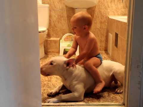 把狗當馬騎!你是牛仔嗎!