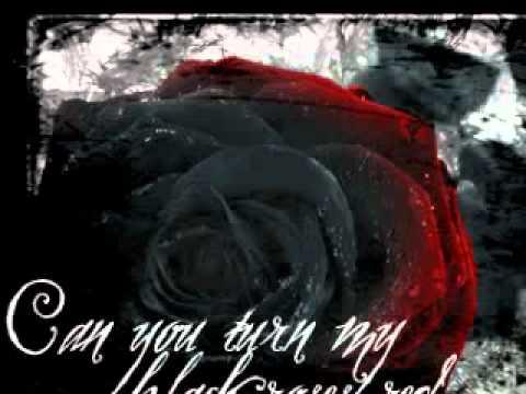 Tekst piosenki Mystery - Black Roses po polsku