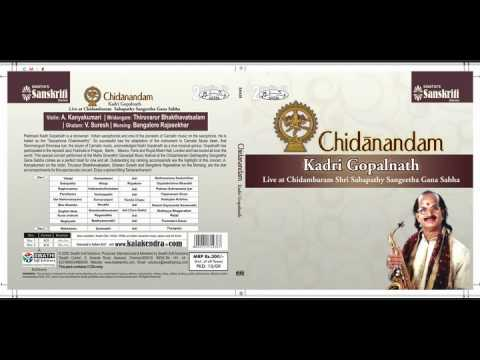 Carnatic Music Saxaphone - Kadri Gopalnath Live At Chidambaram