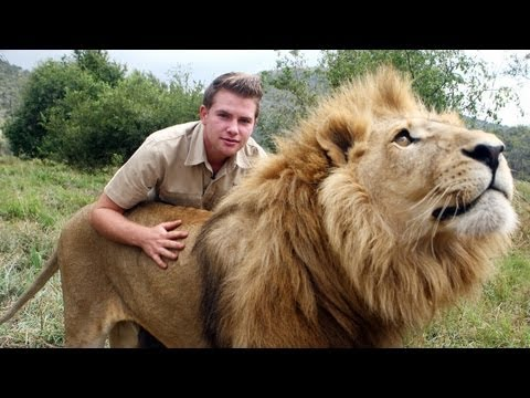 lion - Lion Tamer Teenager In South Africa SUBSCRIBE: http://bit.ly/Oc61Hj WHILE most teenagers are playing computer games, Shandor Larenty likes to indulge in a di...