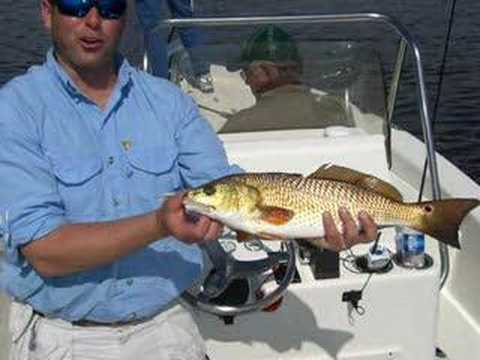 Speckled Trout & Redfish Fishing Trip in Louisiana