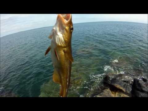 как ловить рыбу на море в адлере