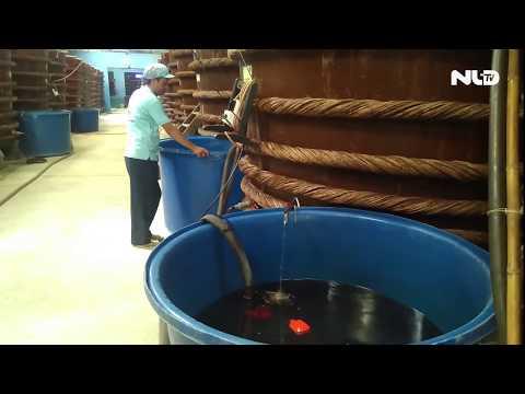 Bảo vệ nước mắm truyền thống là bảo vệ người tiêu dùng | NLĐTV - Thời lượng: 2 phút, 45 giây.