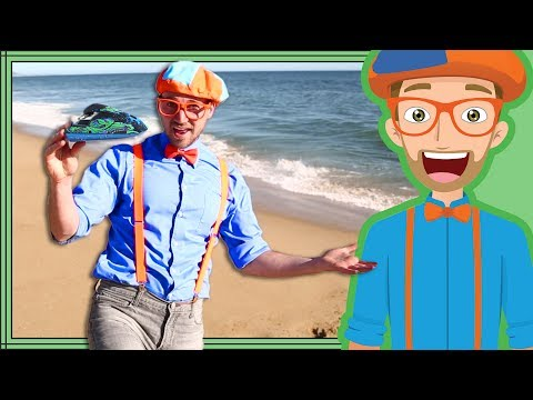 Blippi Jet Ski  Boats for Children  Educational Videos for Toddlers