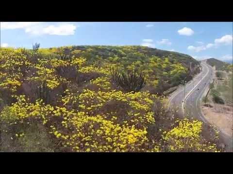 Cúcuta Drone Video