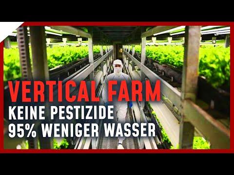 Modernste Vertical Farm Europas - die Zukunft der Landwirtschaft