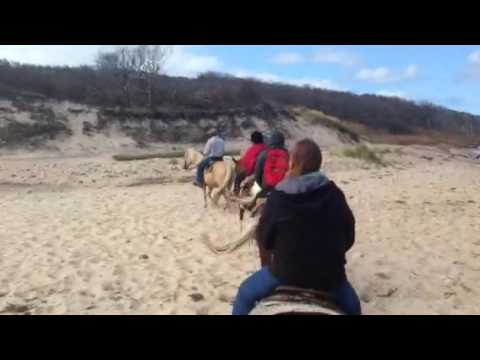 Horseback riding on Montauk, long island. Horseback riding on beach.