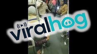 animale cu capra in autobus