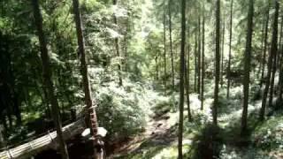 Aberfoyle United Kingdom  city photos : Go ape Aberfoyle-Uk's longest zip wire