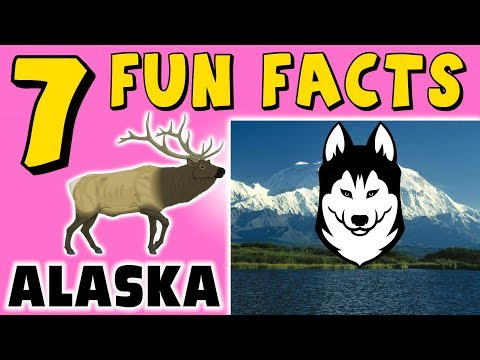 7 FUN FACTS ABOUT ALASKA! FACTS FOR KIDS! Dog Sled! Moose! Denali! Learning Colors! Funny! Puppet!