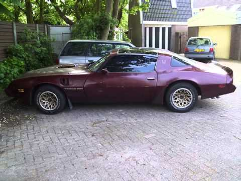 1980 Pontiac Trans Am pictures