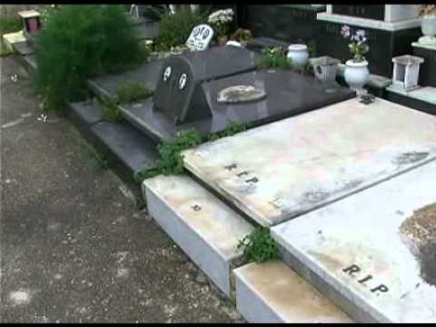 arrrested - Favourite-MaltaMedia: Addolorata Cemetery thieves arrrested. More news on http://www.maltamedia.com.