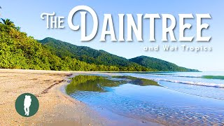 The Daintree Rainforest and Wet Tropics | Queensland | Australia Nature