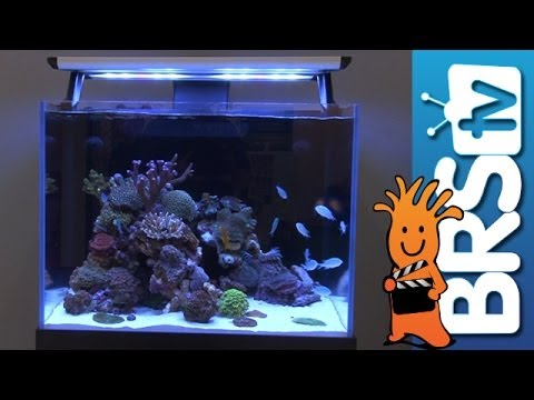 New Aquariums and Diffused LED's from Red Sea | Interzoo 2014