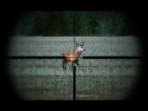 Video of Hunting Simulator Free