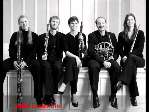woodwind quintet - Piazzola Libertango for Wind Quintet, performed by the Lodos Ensemble.