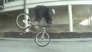 crazy bmx bike skills