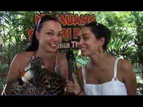 Travel Tips to Koh Samui Thailand