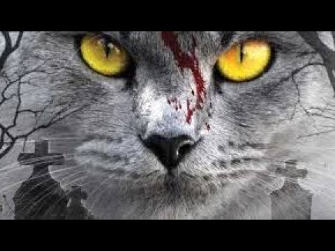 PET SEMATARY Official Trailer (2019) Stephen King Movie Full-HD