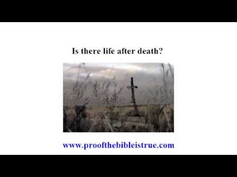 Is there life after death? Creation or Evolution?
