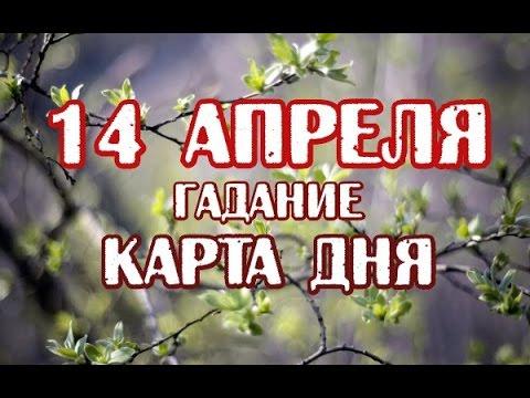 Гадание на 14 апреля 2017 года на ТАРО - КАРТА ДНЯ - DomaVideo.Ru