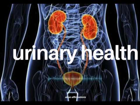 Excellent Urinary Health & Bladder Function Subliminal
