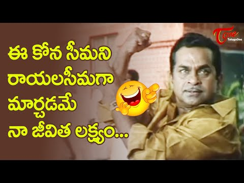 Brahmanandam Best Comedy Scenes | Telugu Movie Comedy Scenes | NavvulaTV