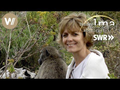Südafrika | Naturschutz am Kap - Länder Menschen Abenteuer (SWR)