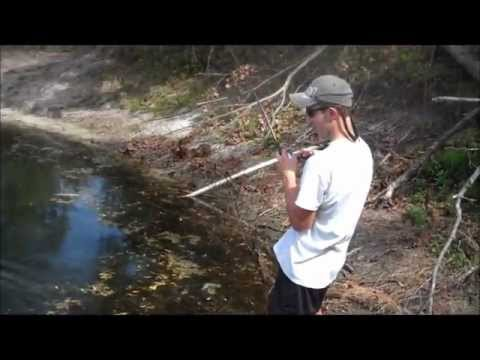 Spawning bass fishing for Bass pond construction