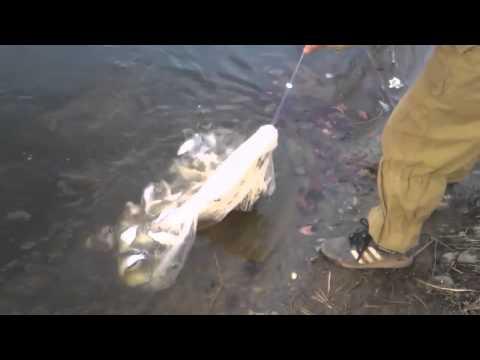 кастинговая рыбалка что это