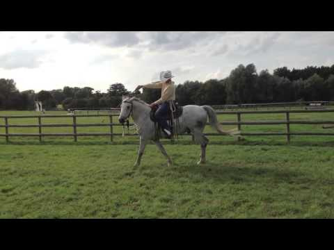 Habits of a Horseman