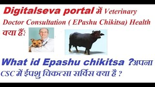Digitalseva portal में Veterinary Doctor Consultation ( EPashu Chikitsa) Health क्या हैं?