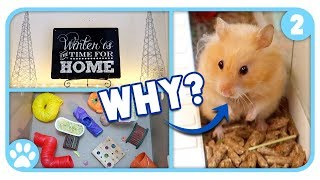Vlogstice Day 2: Holiday Decorating & The Truth About Hamsters by ErinsAnimals