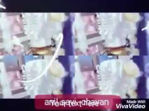 Video Dil junglee kabootar (Eagle jhankar)- '- Qatar udat  naryan - download in MP3, 3GP, MP4, WEBM, AVI, FLV January 2017