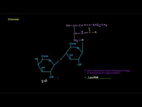 Lipids (Part 10 of 11) - Membrane Lipids - Sphingolipids (examples)