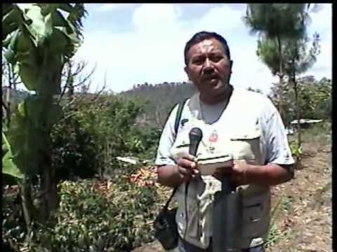 San Martin Jilotepeque, Reportaje repatriacion del joven Eber Sunuc